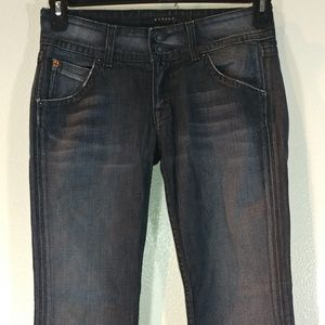 Hudson Faded Black Flare Jeans